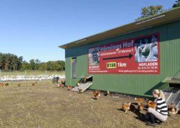 Mobilstall für unsere Hühner