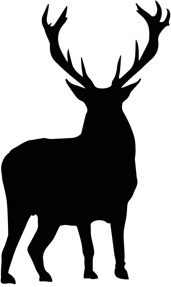 Wild aus eigener Jagd